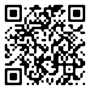 QR Code twitter blog geek Nyini